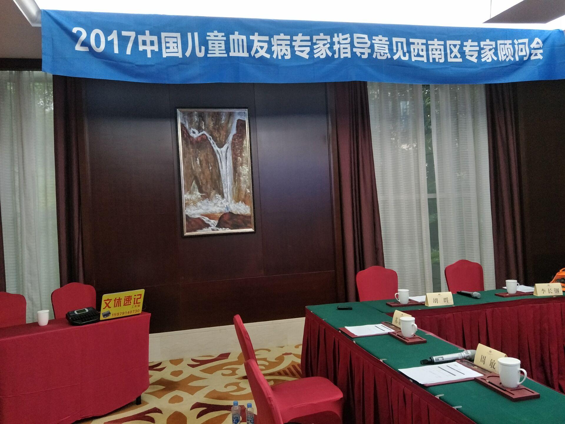 2017中国儿童血友病专家指导意见专家顾问会-西南区